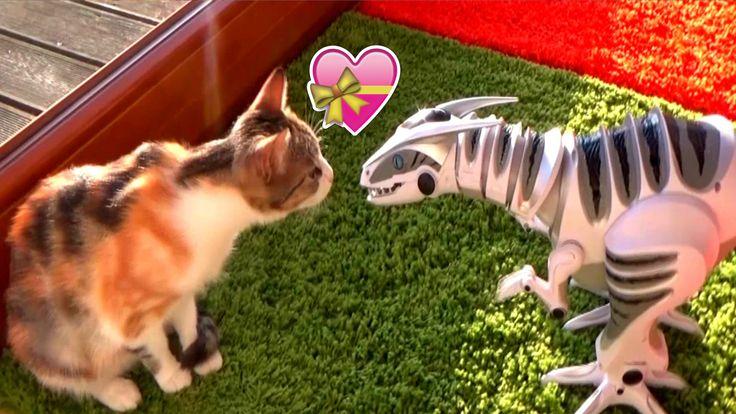 Я - Алиса, Николь Алиса, Алиса, робот, Динозавр, про динозавров, динозавр, Макс, максим, макс, кошка, кошечка, сливкишоу, любовь, робораптор, игры, дети, распаковка, развлечения, кошки, животные, алиса, динозавры, roboraptor, тиранозавр, динозавры мультфильм, про животных, Диномир, смешно, драконы, смешные видео, dinosaur, игра, игрушки, review, max, ГИГАНТСКИЙ, БОЛЬШОЙ, Огромный, шок, СУПЕР, МЕГА, укусил, попа, коты, dino robot, поезд динозавров, смешные, смех, приколы с котами, милые дети…