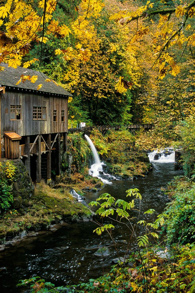 51 best images about clark county washington on pinterest for The cedar mill