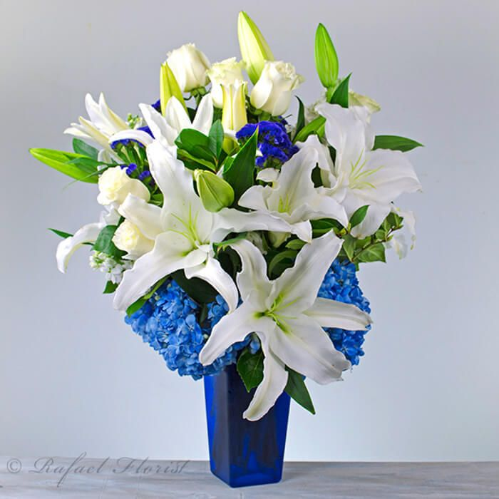 This Beautiful Blue And White Flower
