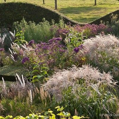 24 best images about le jardin plume on pinterest for Le jardin plume 76