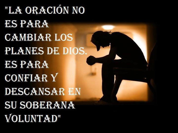 251 best images about Dichos y frases on Pinterest ...