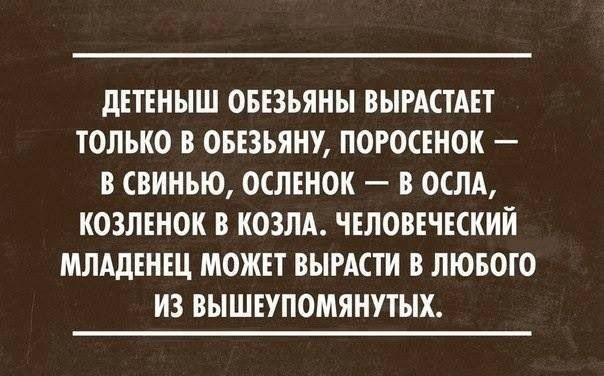 Gallery.ru / Фото #5 - Задумаемся? - angry-firefly