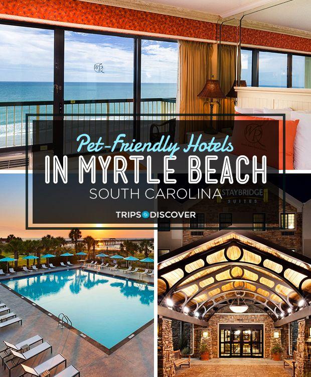 9 Pet Friendly Hotels In Myrtle Beach South Carolina Myrtle Beach Hotels Pet Friendly Hotels Myrtle Beach South Carolina