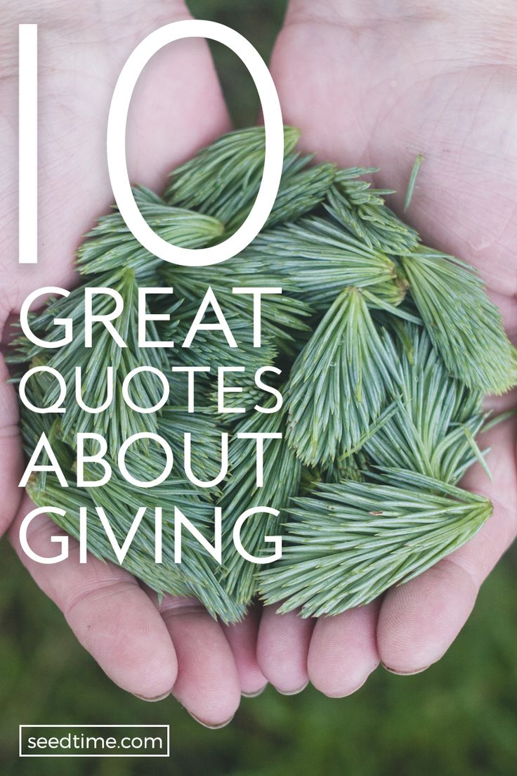 10 Great Quotes About Giving