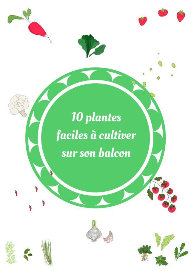 10 plantes faciles à cultiver sur son balcon (fiches pratiques à télécharger) - Les échos Verts