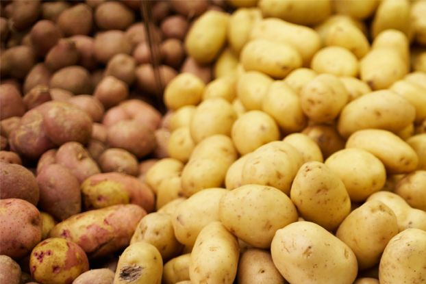 Have you ever wondered why raw foodies don't eat potatoes? It's not because of an aversion to carbs; it's for safety reasons. Raw potatoes are potentially toxic because of a compound called solanine, which can cause stomach pains and even paralysis.