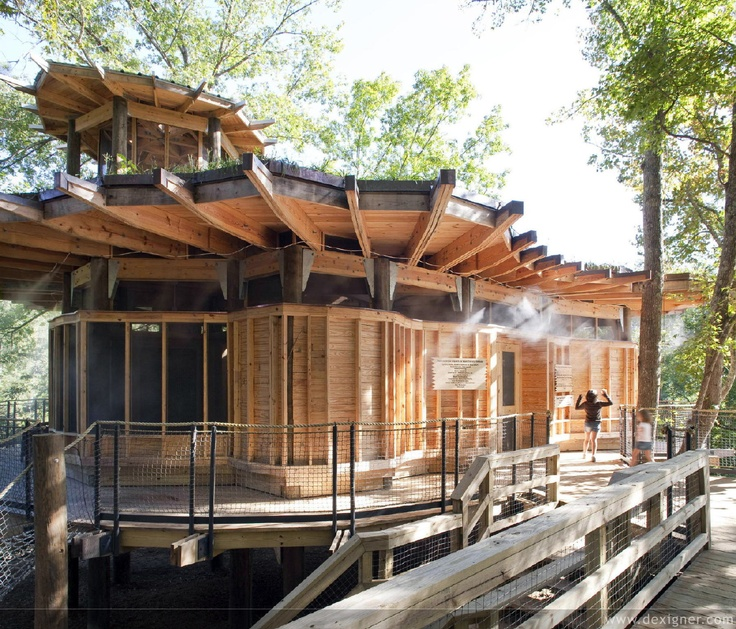 Camp 39 s new treehouse provides play and educational opportunities - Treehouse home designs ...