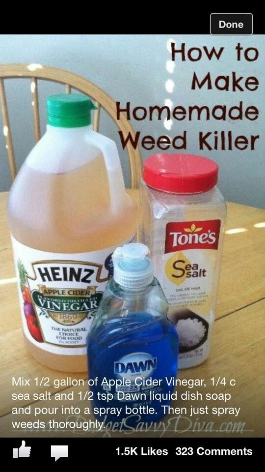 How To Kill Weeds Organic Creative Ideas Pinterest Households Products And Weed
