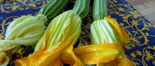 Fried Zucchini Flowers / Fiori di Zucchini Fritti