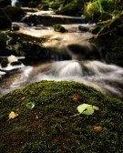 A Woodland Creek By The Road Up To Dalsnuten, Sandnes. Royalty Free Stock Photo, Pictures, Images And Stock Photography. Image 14956271.