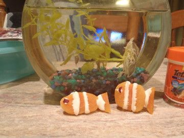 Nemo Clownfish Snacks
