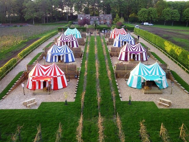 We could do like a Versailles style garden and do yurts for rent like a hostel and have community meals cooked over a fire like medieval times!!! Just mush all our dreams together!!