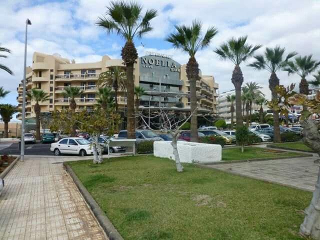 Hotel Noelia sur,  tenerife playa de las americas