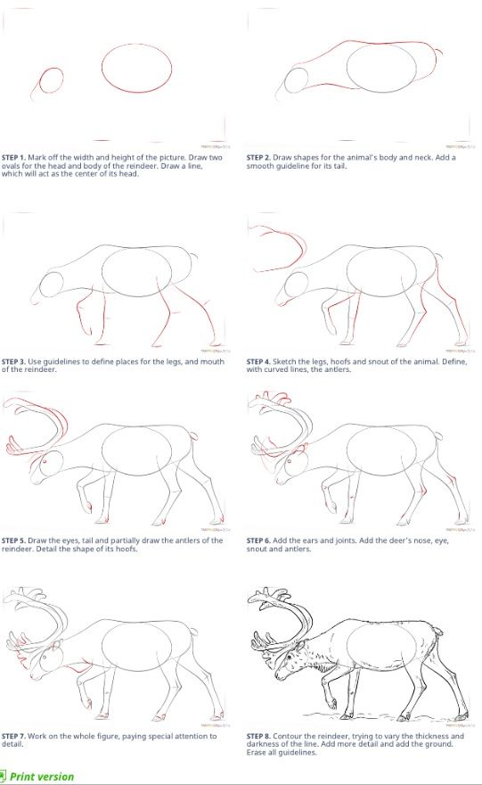 How to draw deer super coloring .com