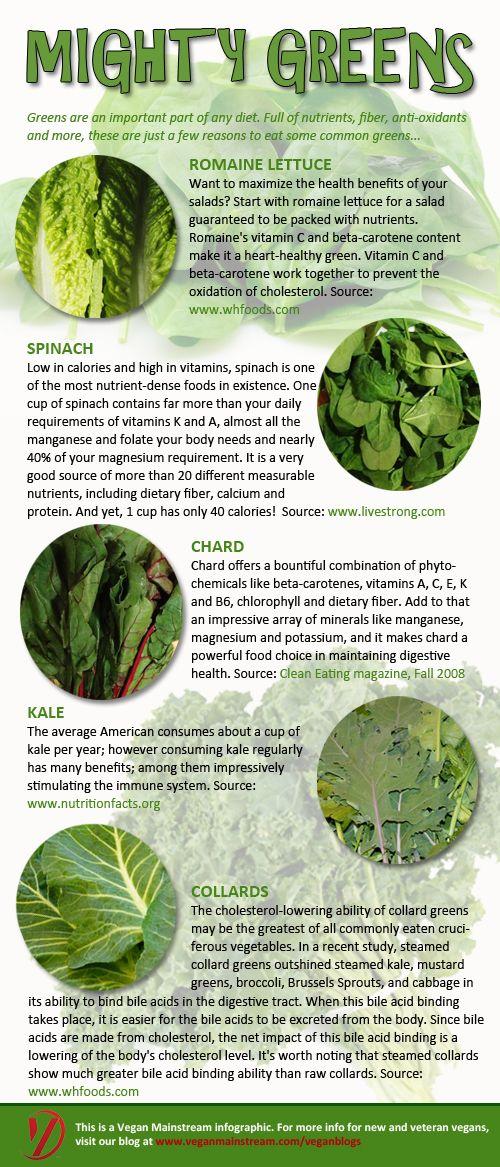 vegan-mofo-mighty-greens-infographic-vegan-mainstream_500