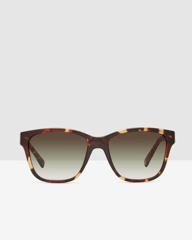 1000  ideas about tortoise shell on pinterest