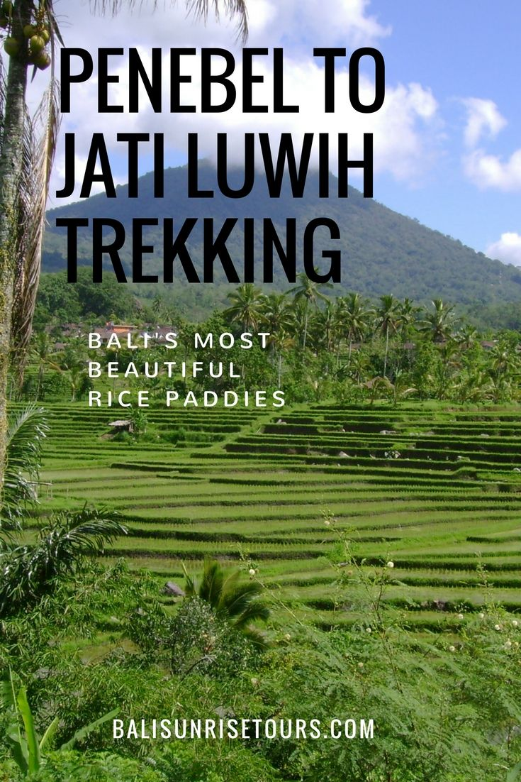 This amazing Bali tour takes you to the UNESCO World Heritage rice paddies of Jati Luwih as well as beautiful waterfalls and lush jungles.