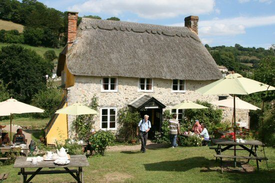 The Old Bakery is now in the care of the National Trust and has been given a new lease of life providing hungry visitors with delicious snacks and cream teas. Branscombe | South Devon | England