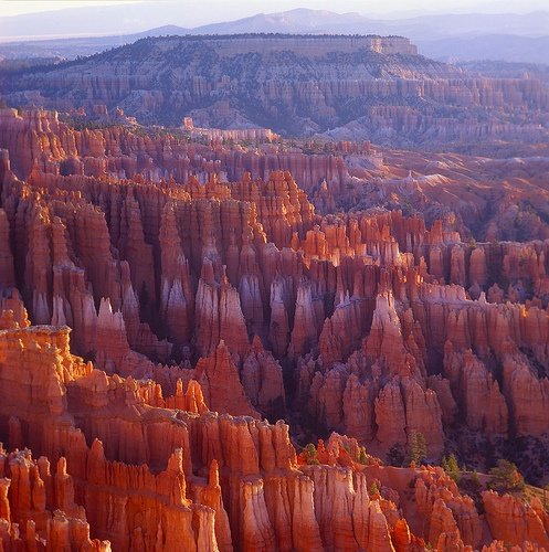 Fairyland Bryce Canyon Utah One Of The Most Beautiful Places In America Check Out The Size