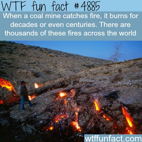 Coal mine fire - Burns for Decades or Centuries? The Carbon Foot-Print! - WOW! Jus WOW! ~WTF!?! not-a-fun fact!