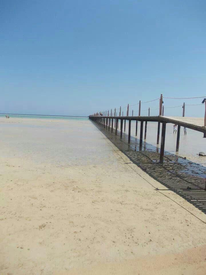 towards the reef...marsa alam