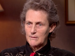 Here's the terrific Dr. Temple Grandin explaining how she had terrible tantrums when she was very young, because she couldn't speak and had sensory issues. It gives all of us food for thought about the importance of adding technology to our toolbox, like the TalkRocket Go App.....which as many learned from my 6/5/13 webinar today, is SO much more than an AAC device for the iPad!  Penina Rybak MA/CCC-SLP,   CEO Socially Speaking LLC. www.SociallySpeakingLLC.com