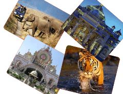 #Wild life #sanctuary of #Gujarat is highlighted as a result of the Asiatic Lions residing here and other animal also..