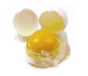 El Huevo: Propiedades Nutricionales del Huevo