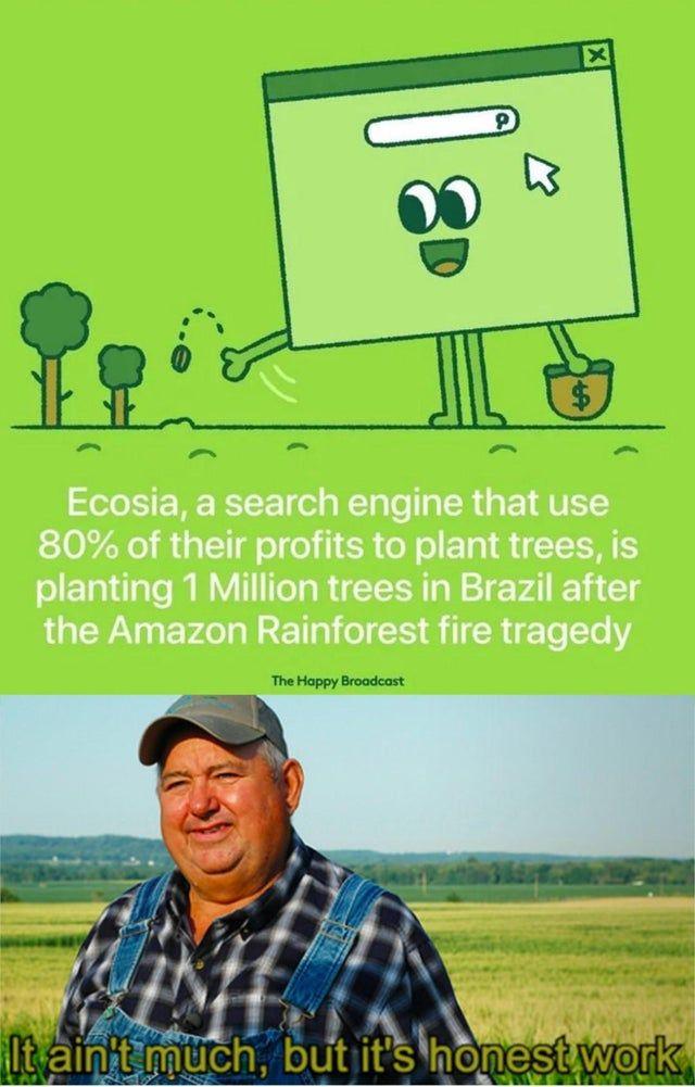 21 Memes About The Amazon Rainforest Burning Down Amazon