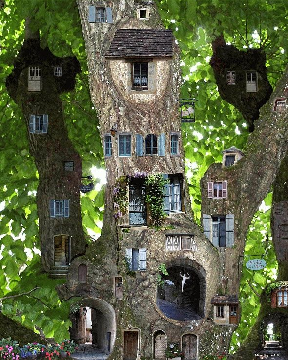 Amazing tree of fairy houses