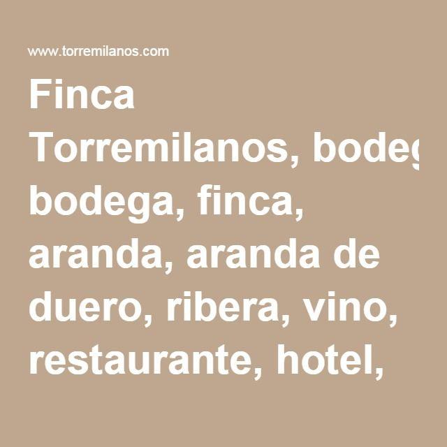 Finca Torremilanos, bodega, finca, aranda, aranda de duero, ribera, vino, restaurante, hotel, bodas, gastronomía, enoturismo, visitas - FINCA TORREMILANOS.
