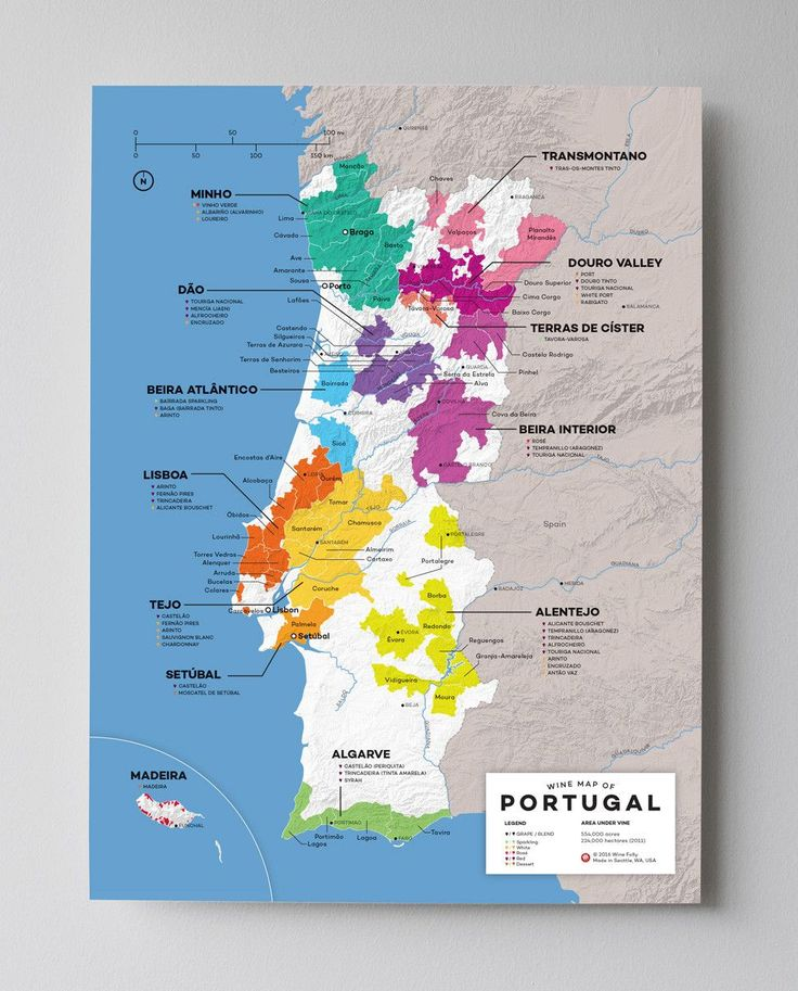 Wine Map of Portugal with Cities