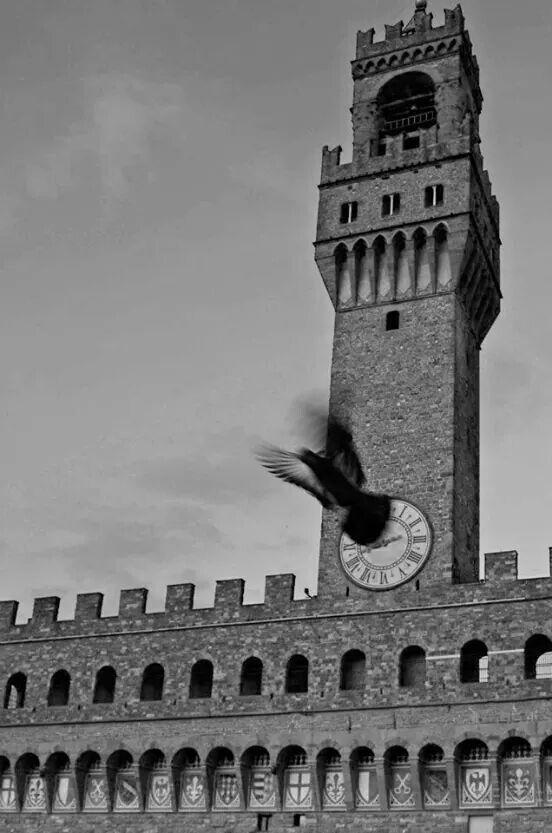 Firenze-italy