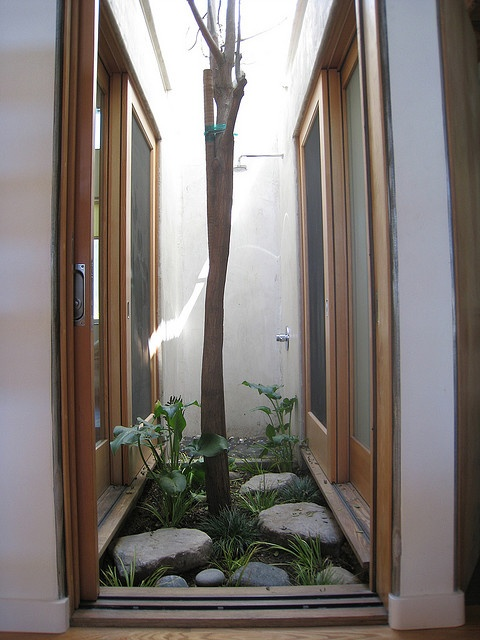Courtyard lightwell w/ outdoor shower
