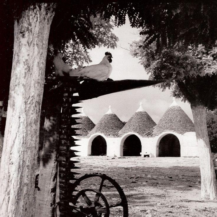 Fotografie Mediterranee