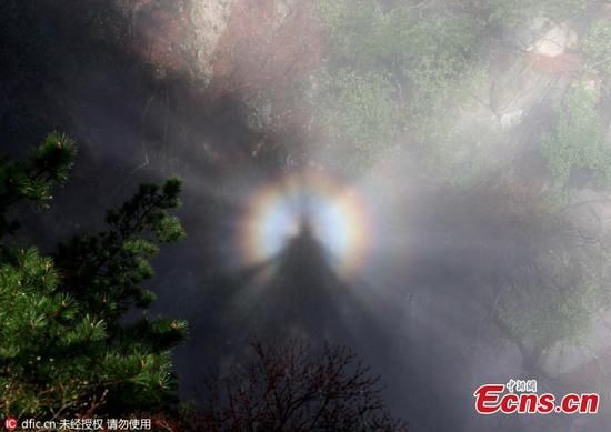 'Buddha's light,' a unique light phenomenon is seen on a peak of Mount Huangshan scenic spot in Huangshan city, East China's Anhui province on Tuesday, April 28, 2016. The special light effect only appears a couple of times per month on the mountain. (Photo/IC)
