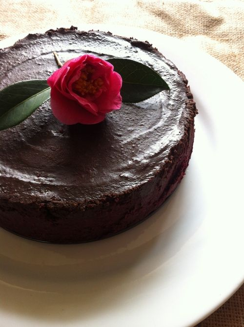 Raw Beetroot Mud Cake - CAKE: 2 cups Brazil nuts, 4 medjool dates, ½ cup currants, 1/4 cup honey, 3 medium grated beetroots, 2 cups desiccated coconut, ½ cup raw cacao powder, 2 tbsps ground psyllium husks. ICING: 100g melted cacao butter, 1 cup raw cashew nuts, ½ cup raw cacao powder, ½ cup maple syrup, 1 tsp lemon juice, 1 tsp tamari.