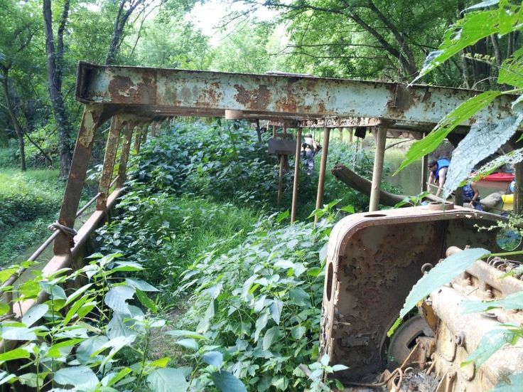 unexplained-events:  Kayakers discover this 110 year old abandoned ship. It is full of plant life but is still sound enough to explore. It s...