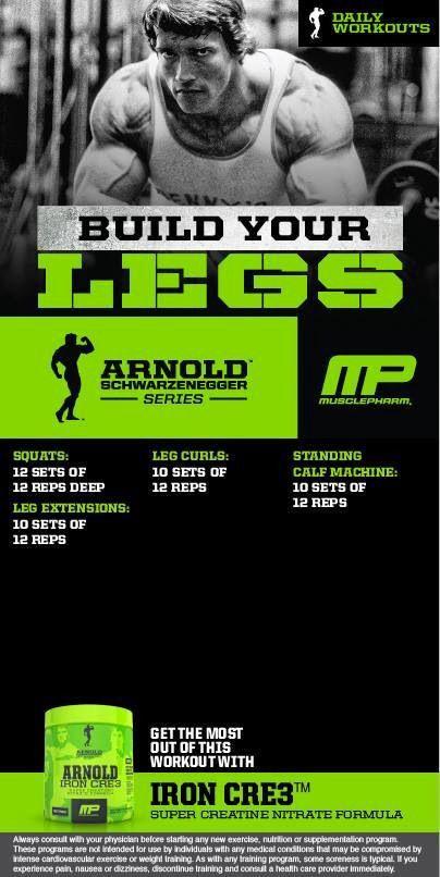 Arnold Leg Routine by MusclePharm [ Waterbabiesbikini.com ] #fitness #bikini #elegance