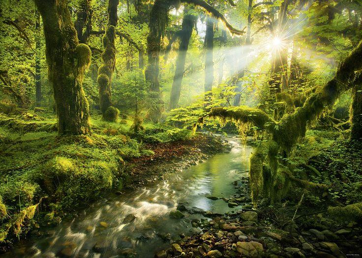 Spirit Garden Forest Jigsaw Puzzle