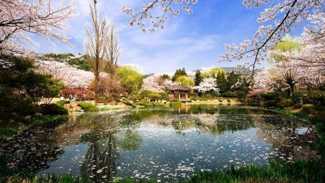 28 Foto Pemandangan Negara Korea 23 Tempat Wisata Di Korea Selatan Yang Wajib Dikunjungi Download Indahny Pemandangan Korea Selatan Pemandangan Yang Indah