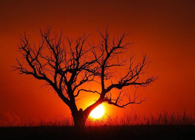 Bushfire Sunset - Canberra - Australia 2006-12-10 by ~Aquila~, via Flickr