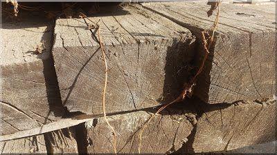 tölgyfa gerenda