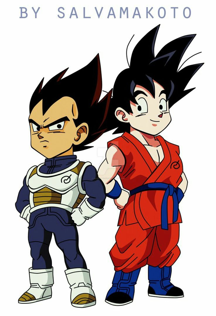 Vegeta and Goku - Visit now for 3D Dragon Ball Z shirts now on sale!