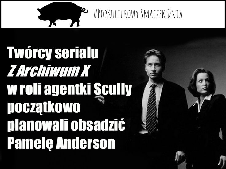 Piewszy z serii popkulturowych smaczków dnia. Czy wiedzieliście że..... więcej na www.pigout.pl