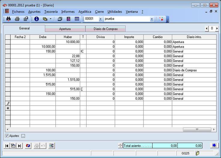 Diario general del programa ERP Gextor Financiero (contabilidad).
