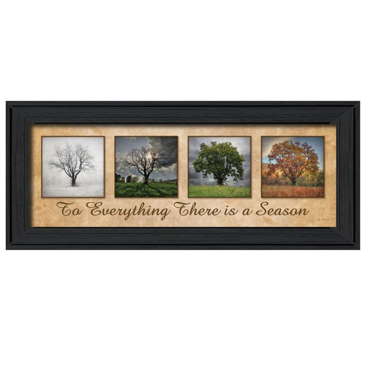 Spring Summer Fall Winter Framed Print By Trendy