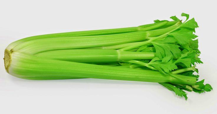 Το σέλινο, ή αλλιώς Apium graveolens, αποτελεί ένα λαχανικό που τα συστατικά του ασκούν μοναδικές αντιοξειδωτικές και αντιφλεγμονώδεις δράσεις.