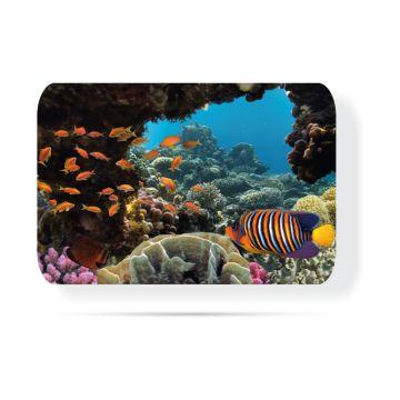 Tropikal balık 30 x 40 Cam Tabla