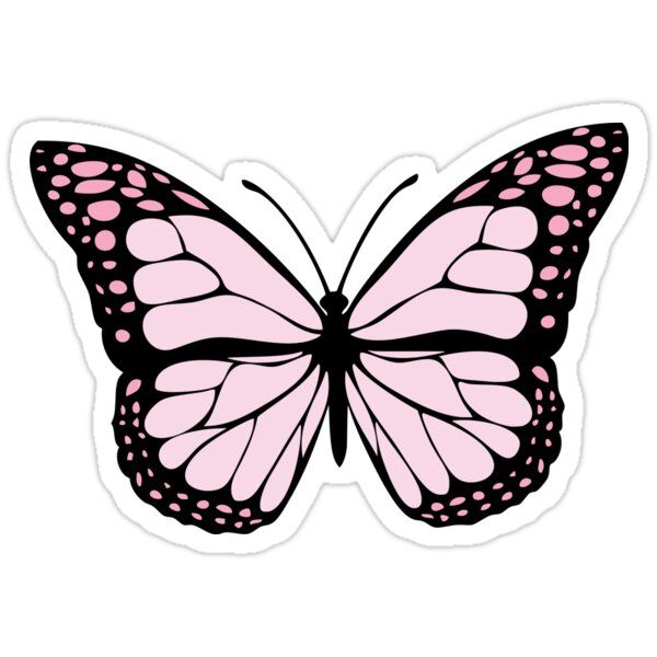 'Pink butterfly' Sticker by spacecatxx in 2020 Cute